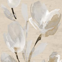 Neutral Tulips II Fine Art Print