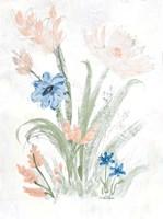 Spring Garden I Framed Print