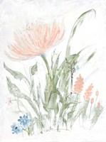 Spring Garden II Framed Print