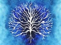 Coral Blues II Framed Print