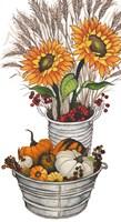 Harvest Bounty Tub II Framed Print