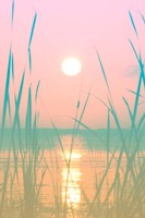 Fresh Sunset Views Fine Art Print