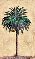 Coconut Tribal Palm I Framed Print