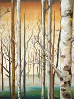 Gold Birch Forest II Framed Print