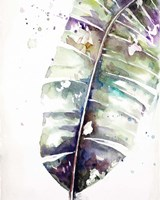 Watercolor Plantain Leaves with Purple II Framed Print