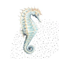 Turquoise Seahorse Framed Print