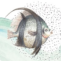 Coastal Fish II Framed Print