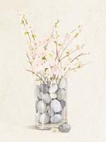 Spring Vase With Pebbles Framed Print