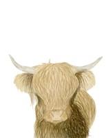 Highland Cattle Fine Art Print