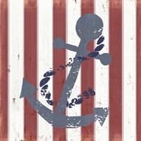 American Coastal III Framed Print