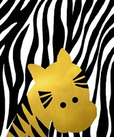 Gold Baby Zebra Fine Art Print