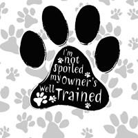 B&W Dog Paw II Framed Print
