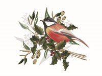Christmas Songbird II Framed Print