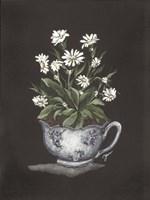 Tea Cup Daisies Framed Print