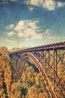 Bridge Over Trees Fine Art Print