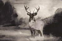 Bull in Forest 1 Framed Print