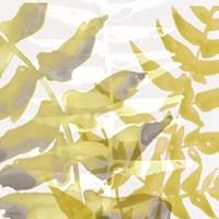 Yellow-Gray Leaves 1 Framed Print