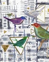 Bird Intersection I Framed Print