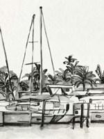 Neutral Tropics IV Framed Print
