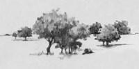 Treeline Sketch II Framed Print