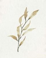 Soft Autumn Branch I Framed Print