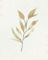 Soft Autumn Branch II Framed Print