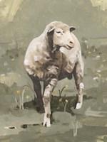 Spring Sheep I Framed Print