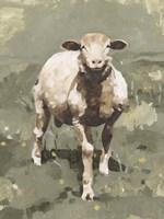 Spring Sheep II Framed Print