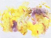Flower Song II Framed Print