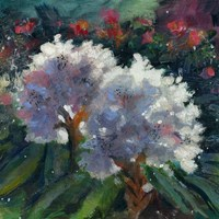 Rhododendron Portrait I Fine Art Print