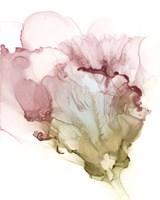 Flowering Pink I Framed Print