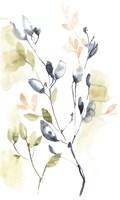 Sweet Leaves I Framed Print