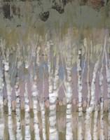 Pastel Birchline I Framed Print