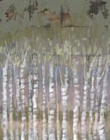 Pastel Birchline II Framed Print