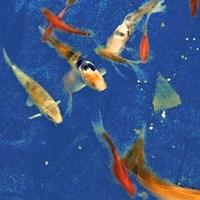 Swimming Lessons II Framed Print