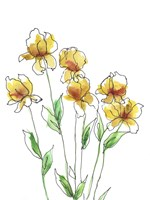 Amber Tulips II Framed Print