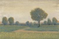 Path at Sunset II Framed Print