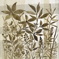 Neutral Garden I Framed Print