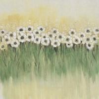 Rows of Flowers I Framed Print