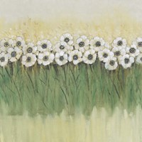 Rows of Flowers II Framed Print