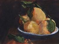 Fruit Plate I Framed Print