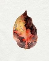 Watercolor Autumn Leaf I Fine Art Print