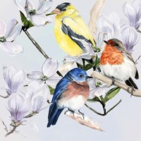 Four Little Birds II Framed Print