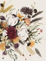 Equinox Bouquet II Framed Print