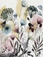 Watercolor Wildflower II Framed Print