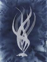 Midnight Kelp II Framed Print