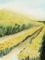 Gilded Aisles I Framed Print