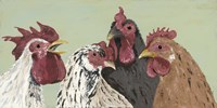 Four Roosters Framed Print