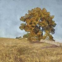 Autumn's Tranquility I Framed Print