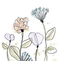 Spindle Blossoms V Framed Print